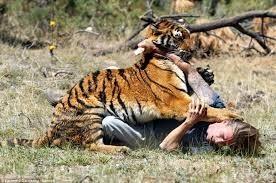 animales en la selva amazonica peligrosos