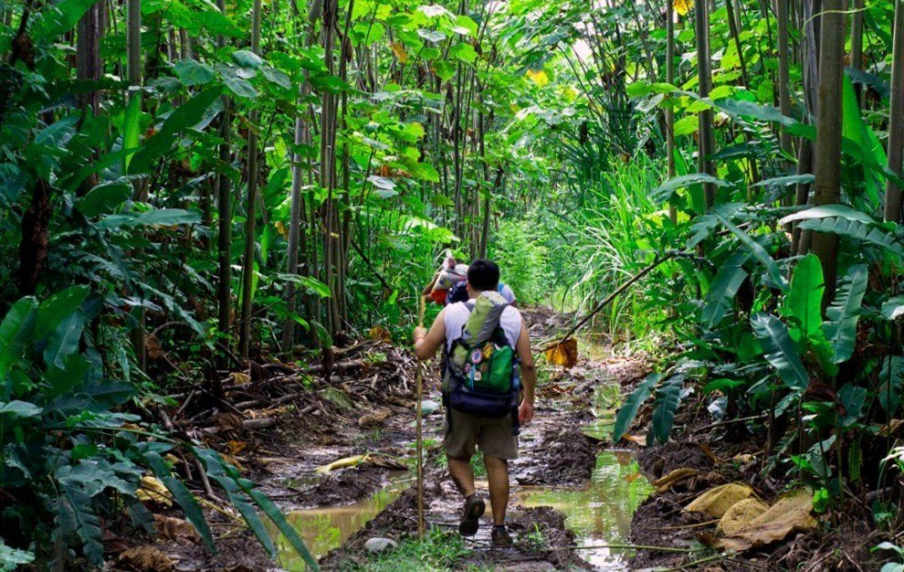 supervivencia en la selva amazonica